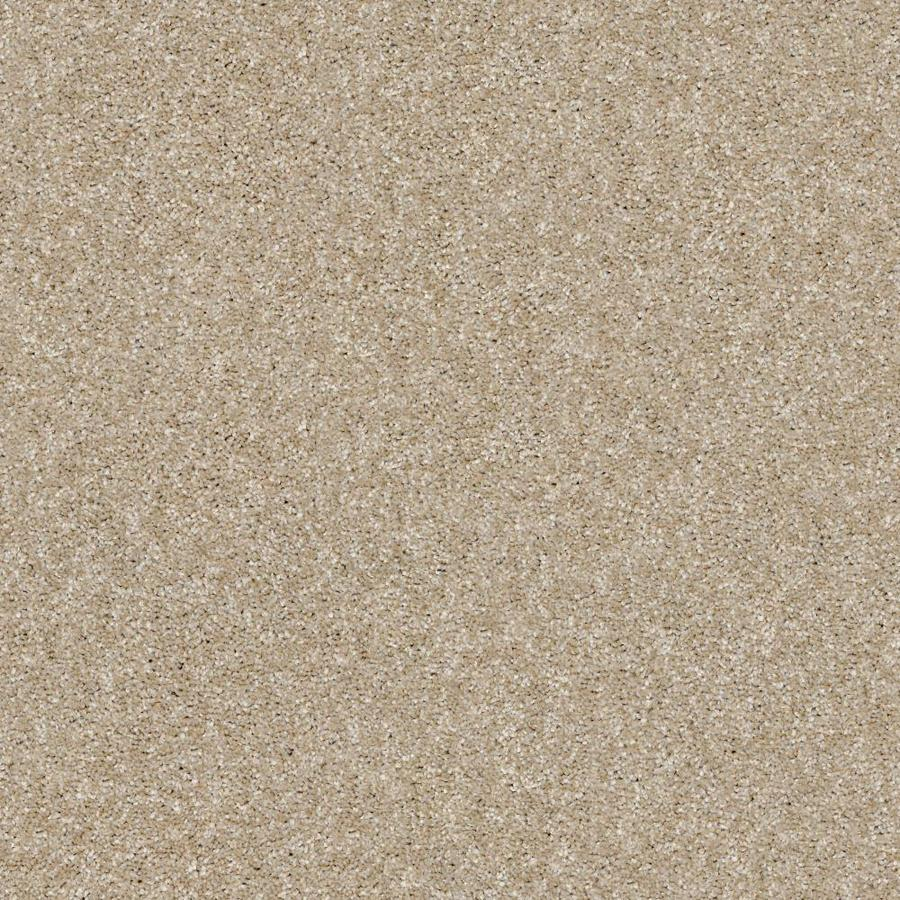 Shaw Wide Width Sculpture III  Sepia 12-ft W x Cut-to-Length Sepia Textured Interior Carpet
