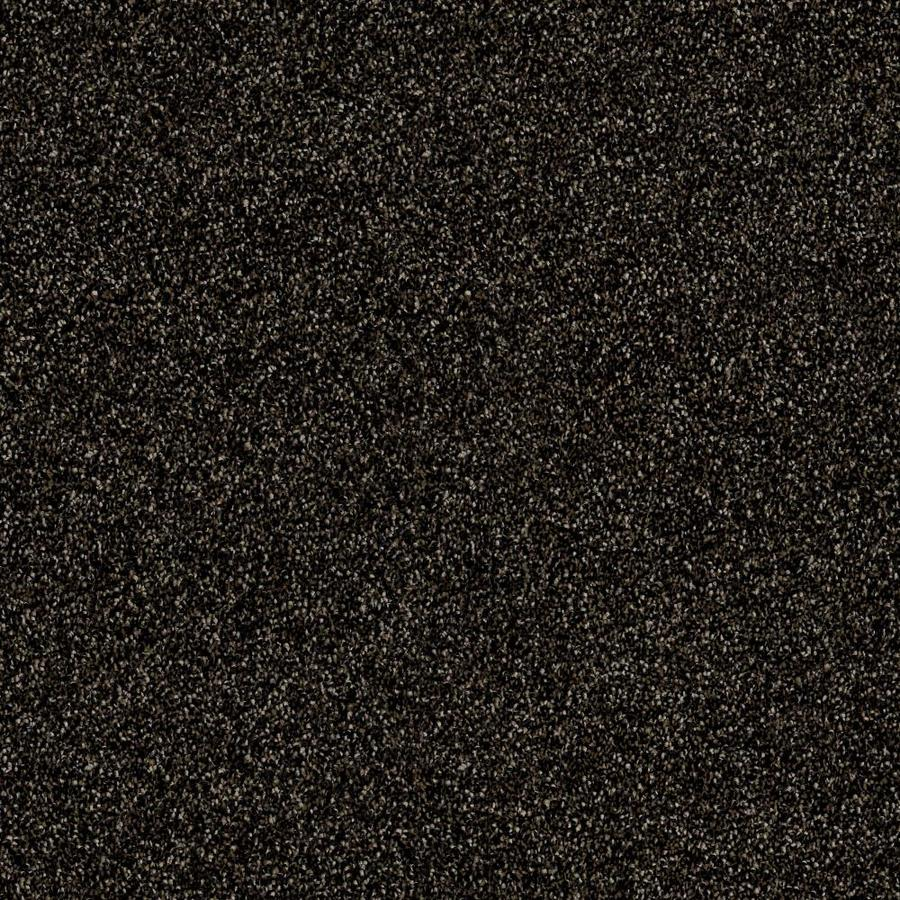 Shaw Wide Width Sculpture III  Rich Earth 15-ft W x Cut-to-Length Rich Earth Textured Interior Carpet