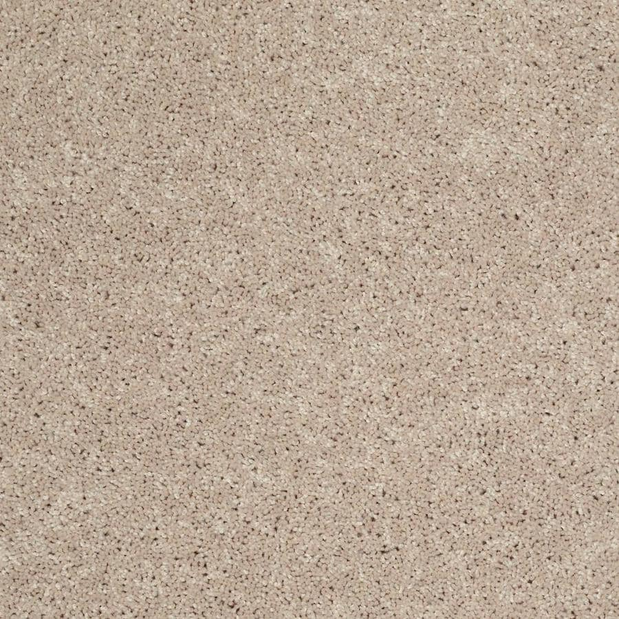 Shaw Wide Width Hubbard Flax Seed Carpet Sample at Lowes com