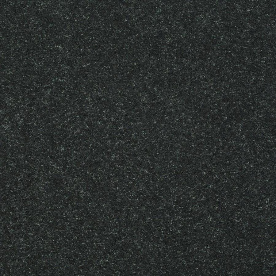 Shaw Intuition I 12 Ft Charcoal Carpet Sample At Lowes Com