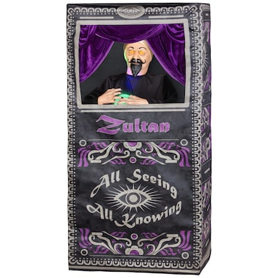 Holiday Living Animated Fortune Teller in Box at Lowes com