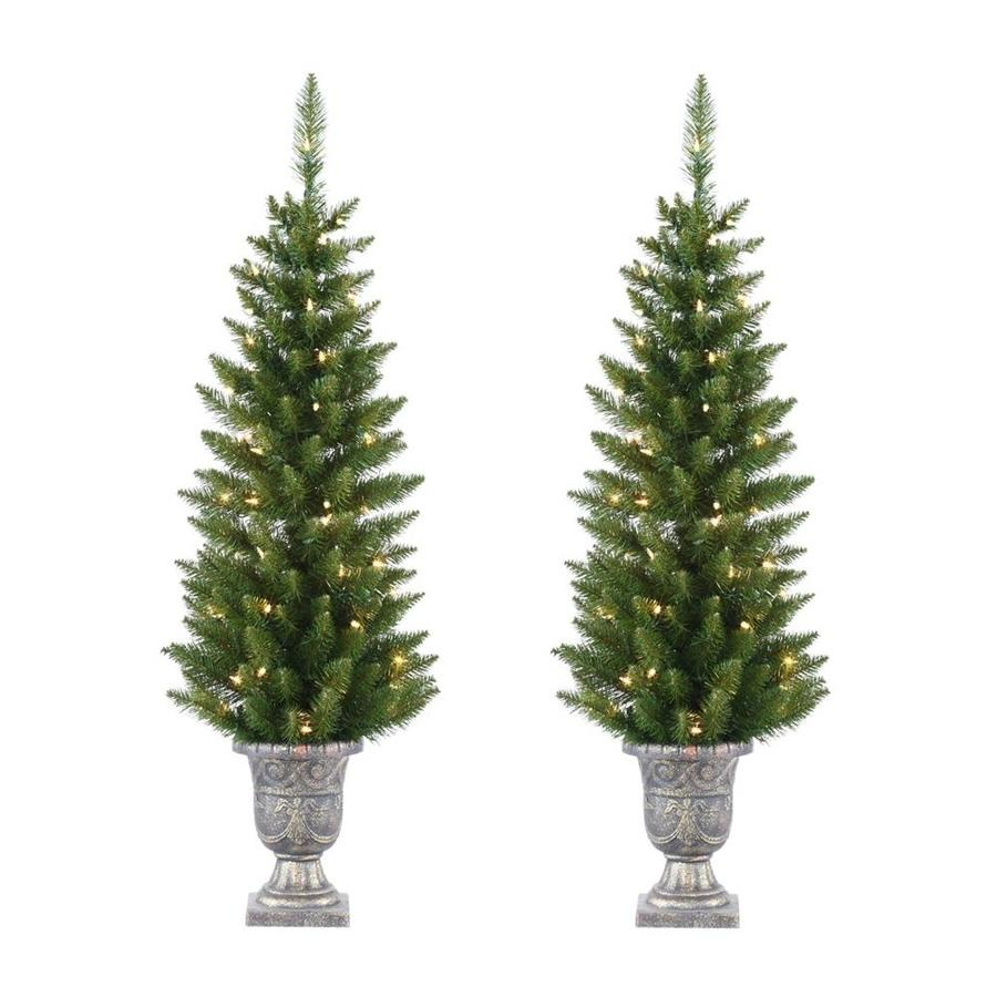 Northlight Set of 2 4-ft Potted Christmas Trees at Lowes.com