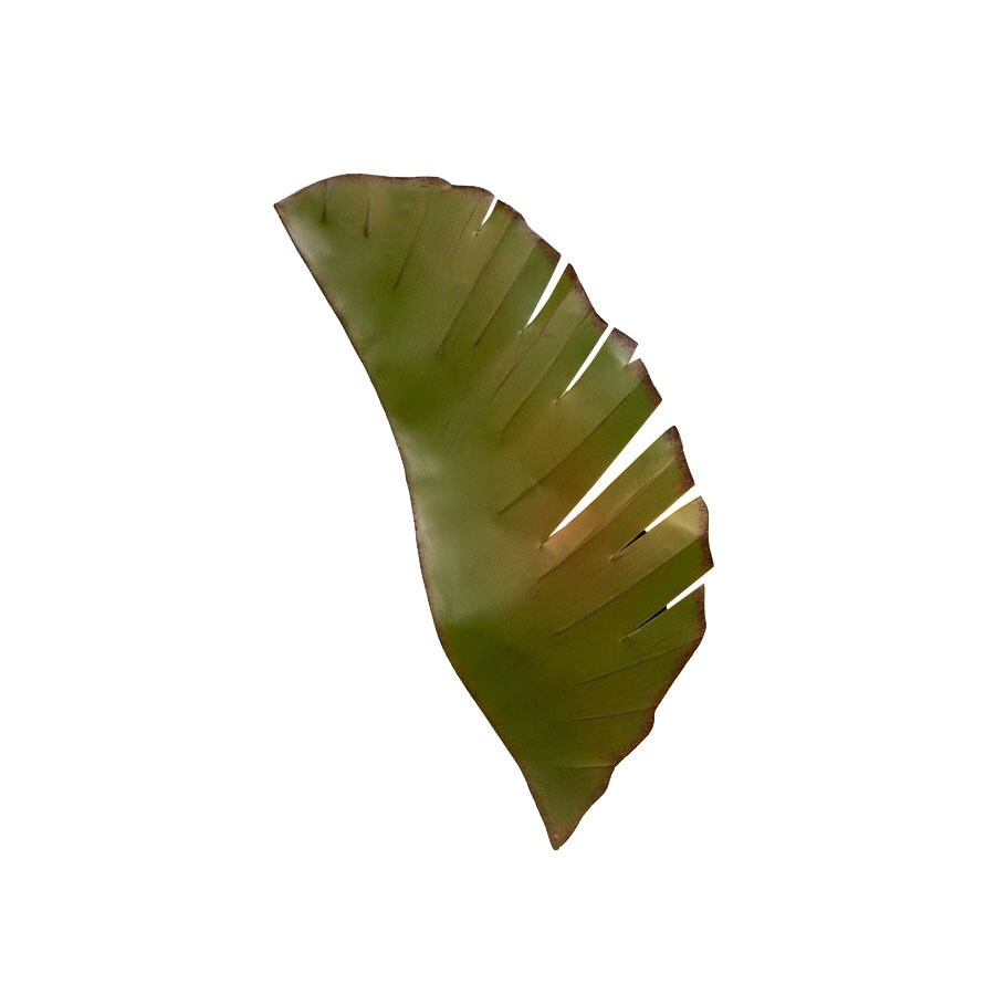 Varaluz Banana Leaf 12-in W 1-Light Banana leaf Pocket Wall Sconce