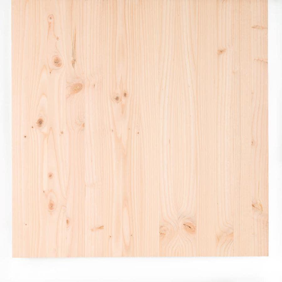 (Actual: 0.99-in x 23.98-in x 3-ft) Douglas Fir Board