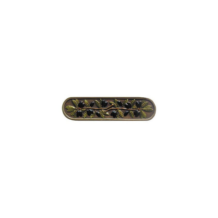 Notting Hill 3-in Center-to-Center Brass Tuscan Bar Cabinet Pull