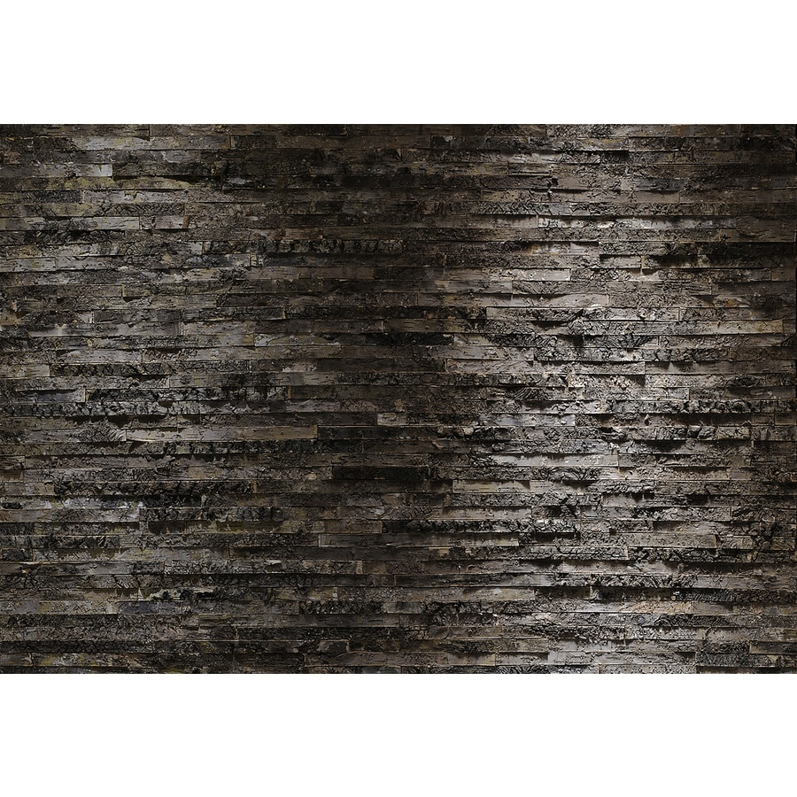 Shop brewster wallcovering komar faux finish textures for Brewster birch wall mural