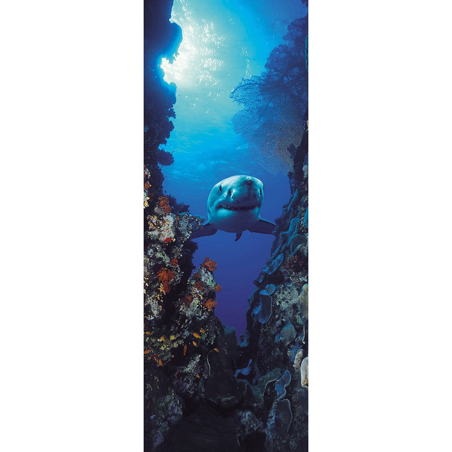 Shop brewster wallcovering komar fish murals at for Brewster wallcovering wood panels mural