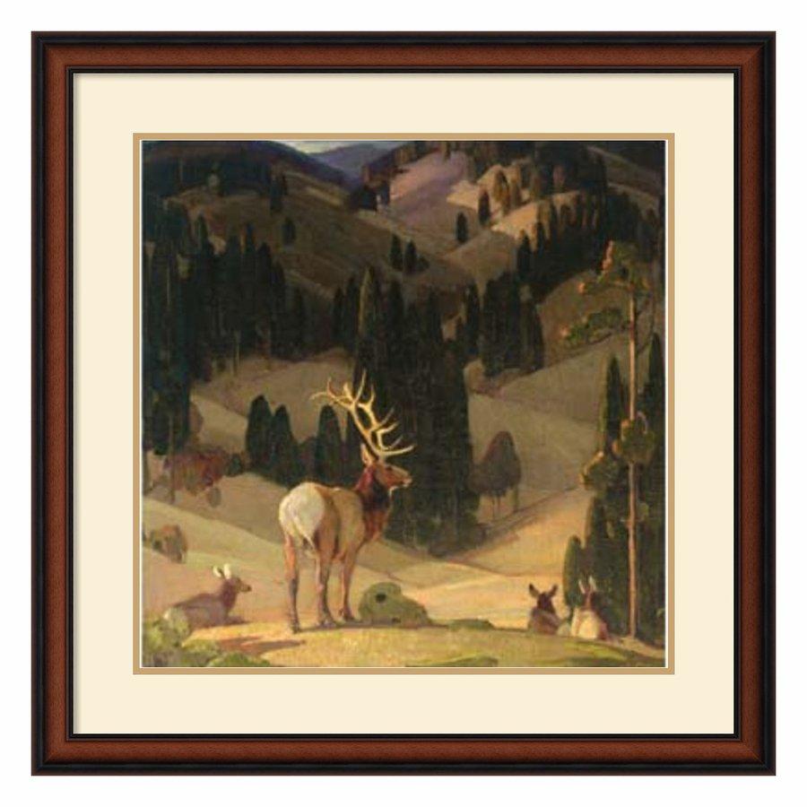 Amanti Art 31.02-in W x 31.02-in H Framed Wood Animals Prints Wall Art