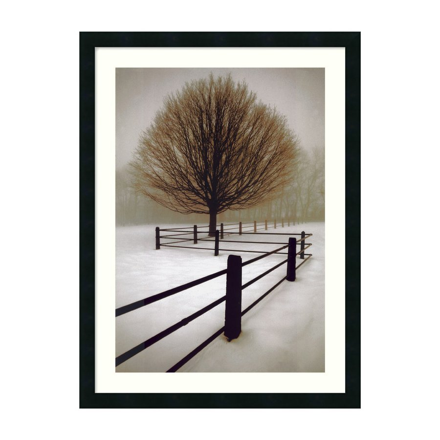 Amanti Art 24.69-in W x 33.07-in H Framed Wood Photography Prints Wall Art