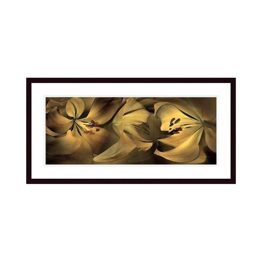 Printfinders 37.75-in W x 19.75-in H Framed Paper Lilies #35 Print Wall Art