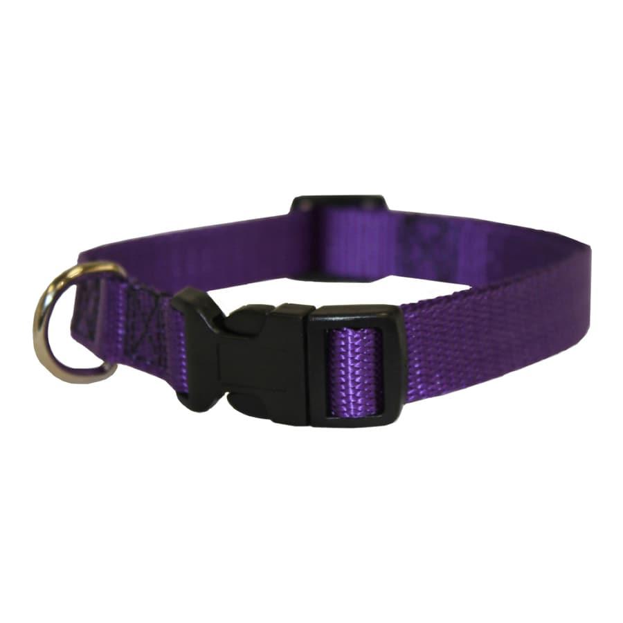 Nylon Dog Collars