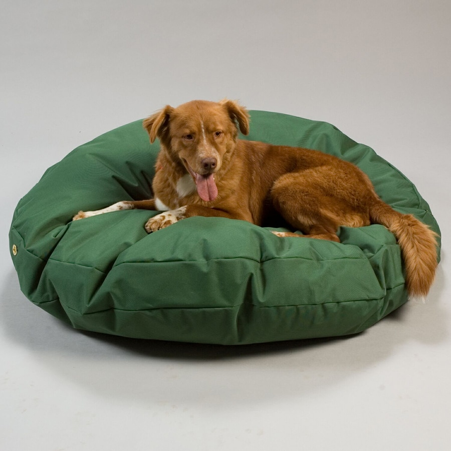 Snoozer Green Polyester Round Dog Bed