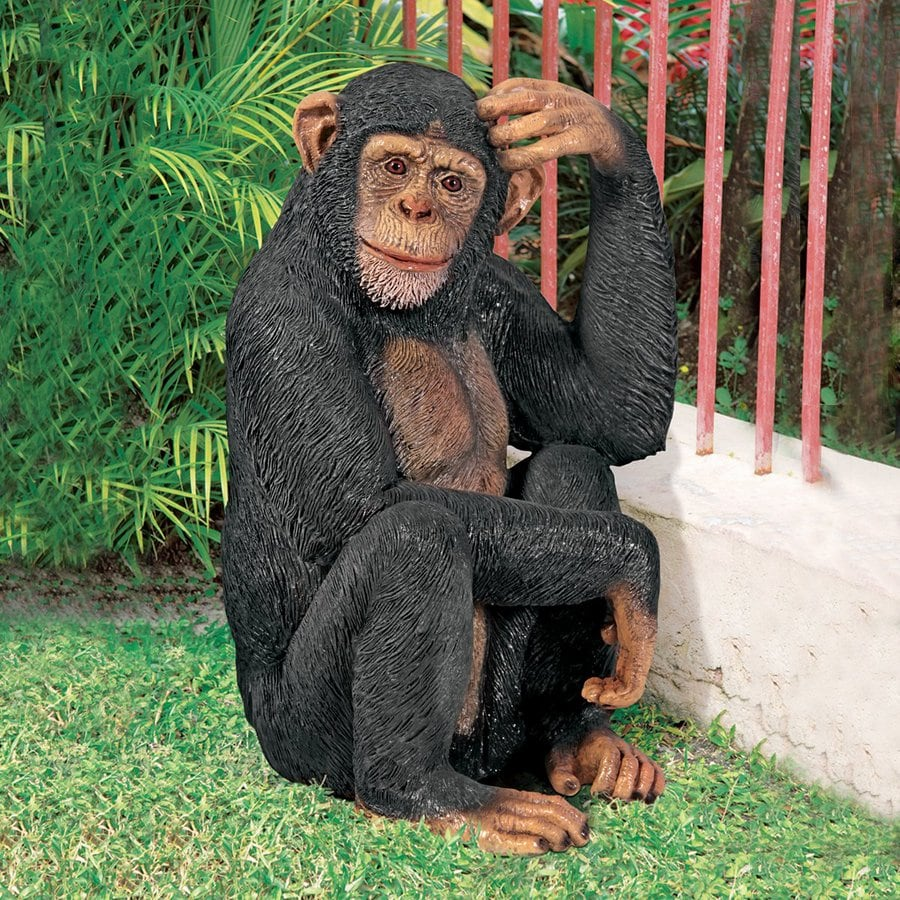 Design Toscano Chauncey The Confused Chimp 27-in Animal Garden Statue