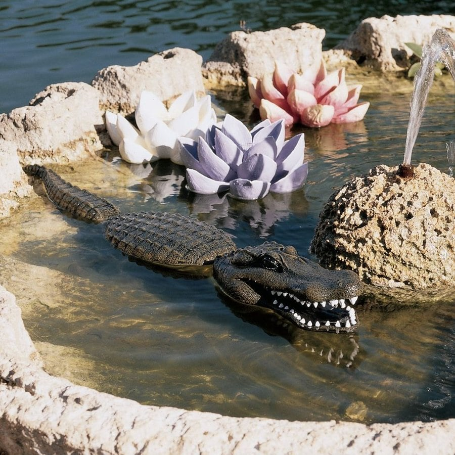 Design Toscano Fearless Floating Gator 4-in Animal Garden Statue
