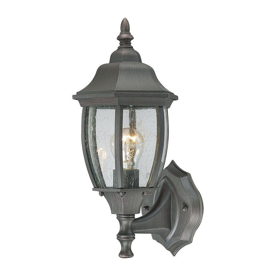 Thomas Lighting Convington 14.25-in H Painted Bronze Outdoor Wall Light