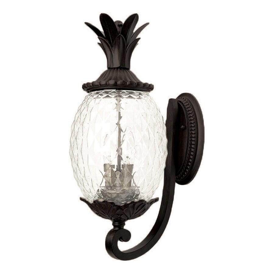 Acclaim Lighting Lanai 21.75-in H Matte Black Outdoor Wall Light