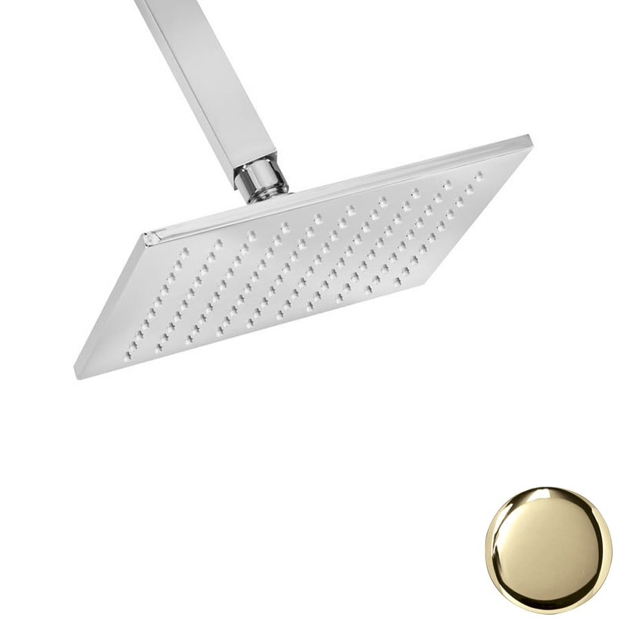 Westbrass Polished Brass Rain Shower Head