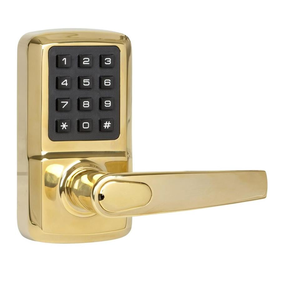 The Delaney Company Privex Brass Left-Handed Electronic Entry Door Lever