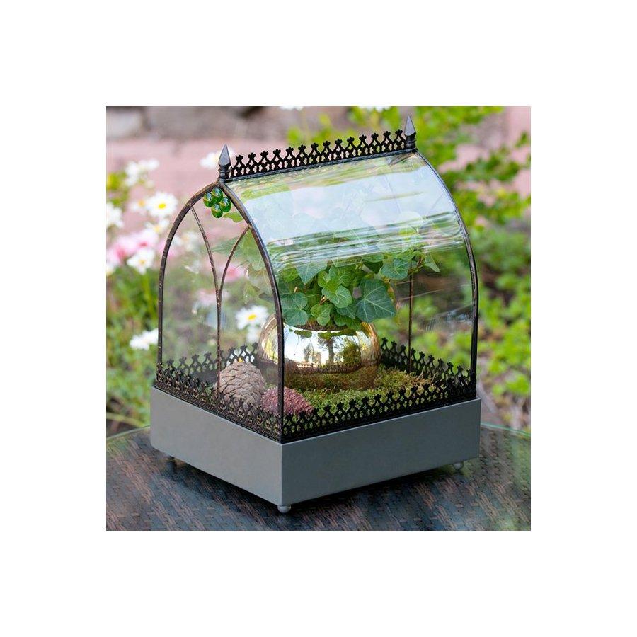 H. Potter Rectangular Tabletop Wardian Display Case Decorative Box