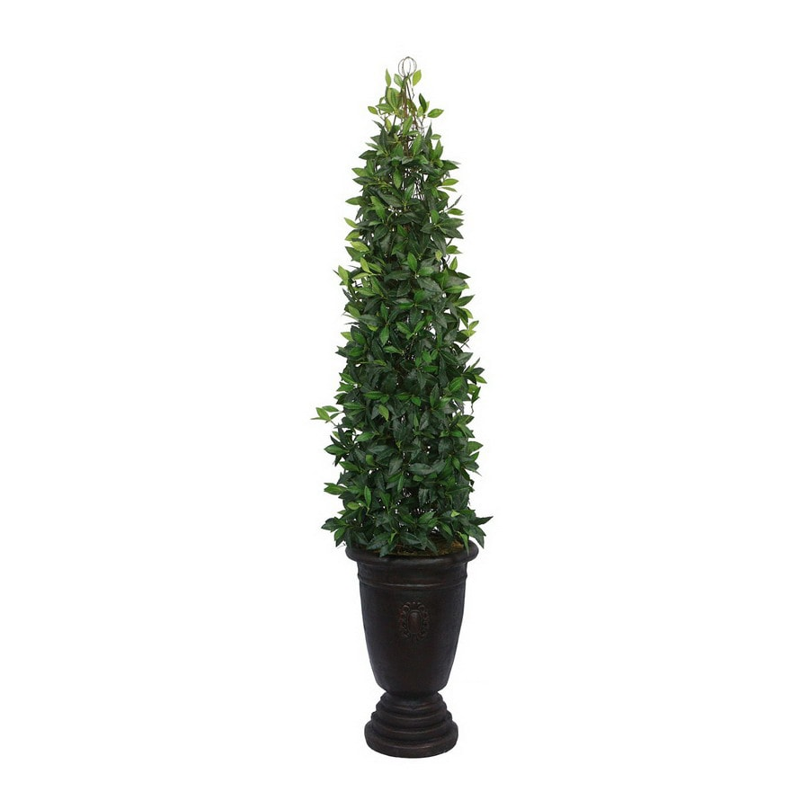 Laura Ashley by Vintage Home 6-ft 11-in Green Bayleaf Tower Vine Topiary