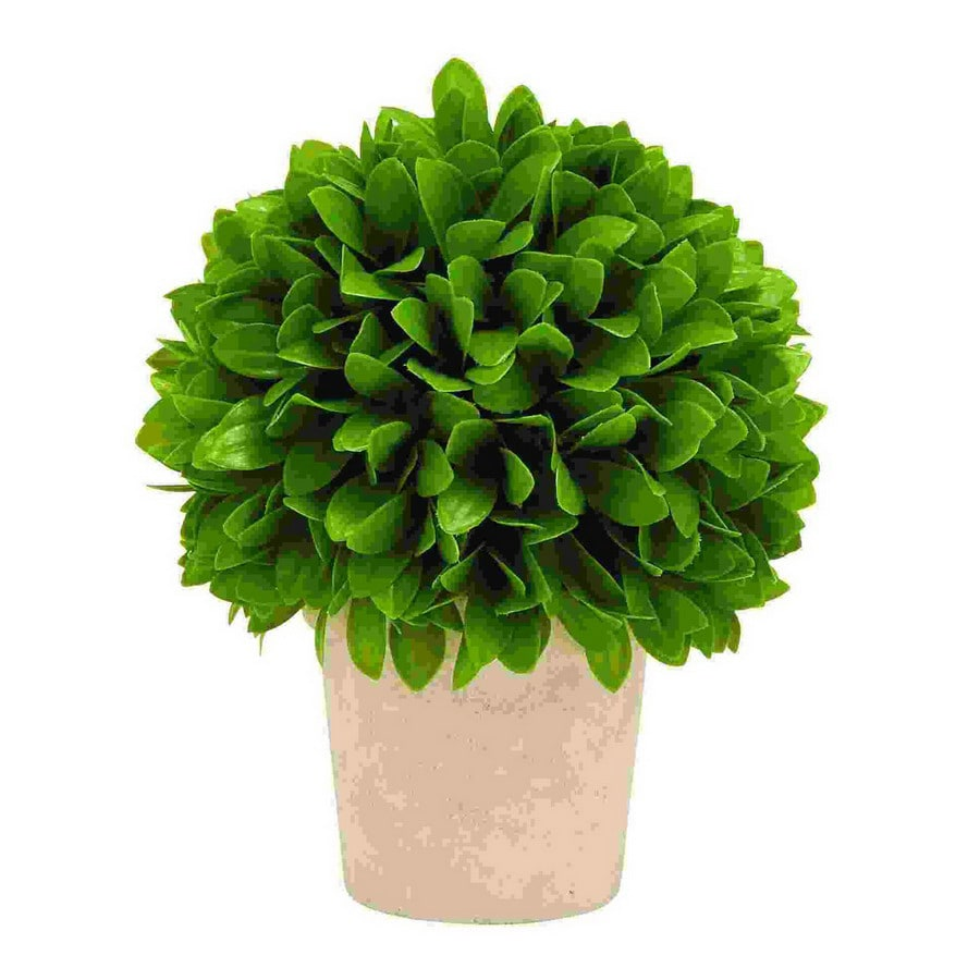 Woodland Imports 10-in Vibrant Green Ball-Shaped Plant