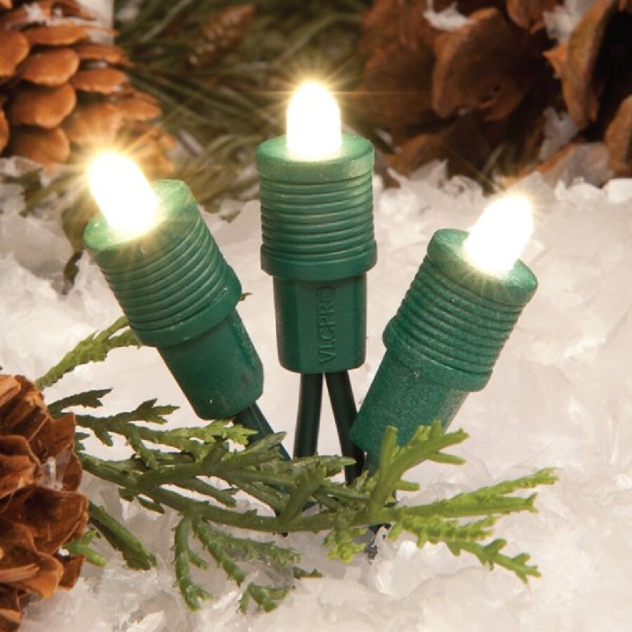 White String Lights Lowes : Shop TreeKeeper 50-Count Constant Warm White Mini LED Plug-in Christmas String Lights at Lowes.com