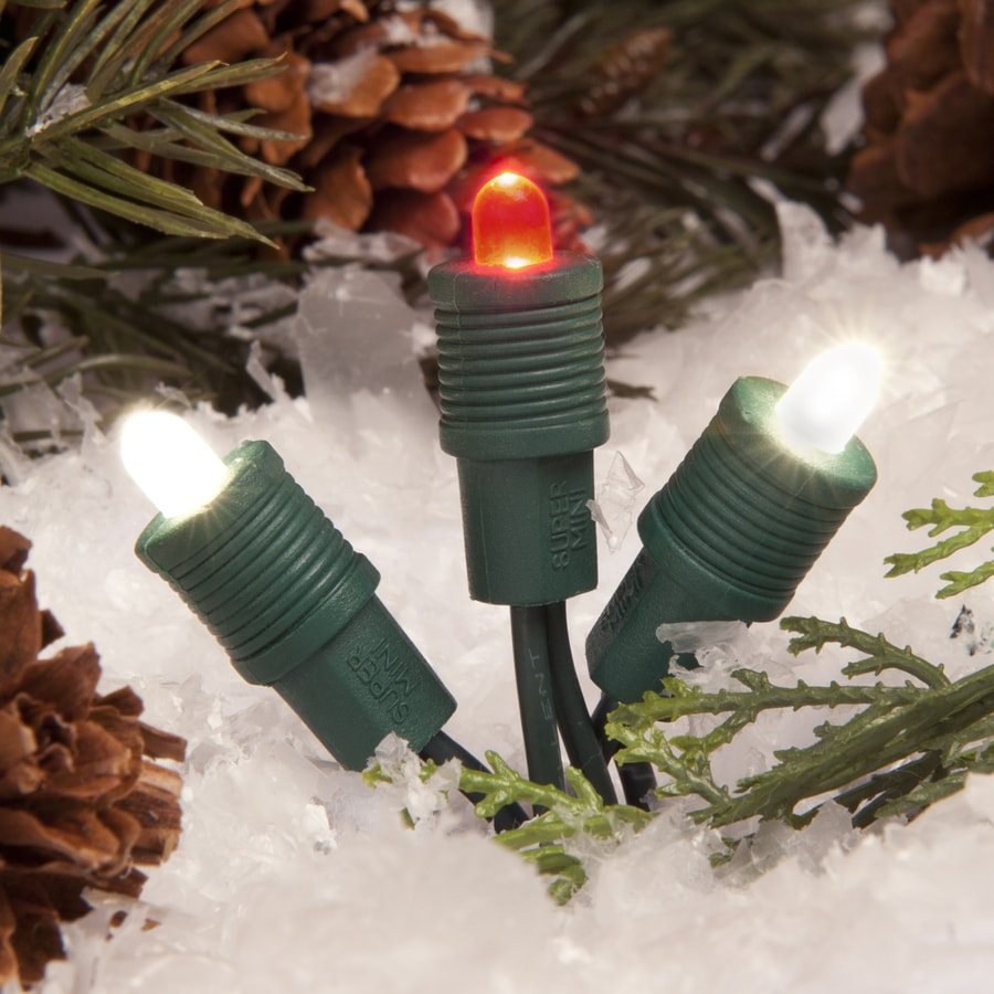 TreeKeeper 50-Count Constant Red/White Mini LED Plug-in Christmas String Lights