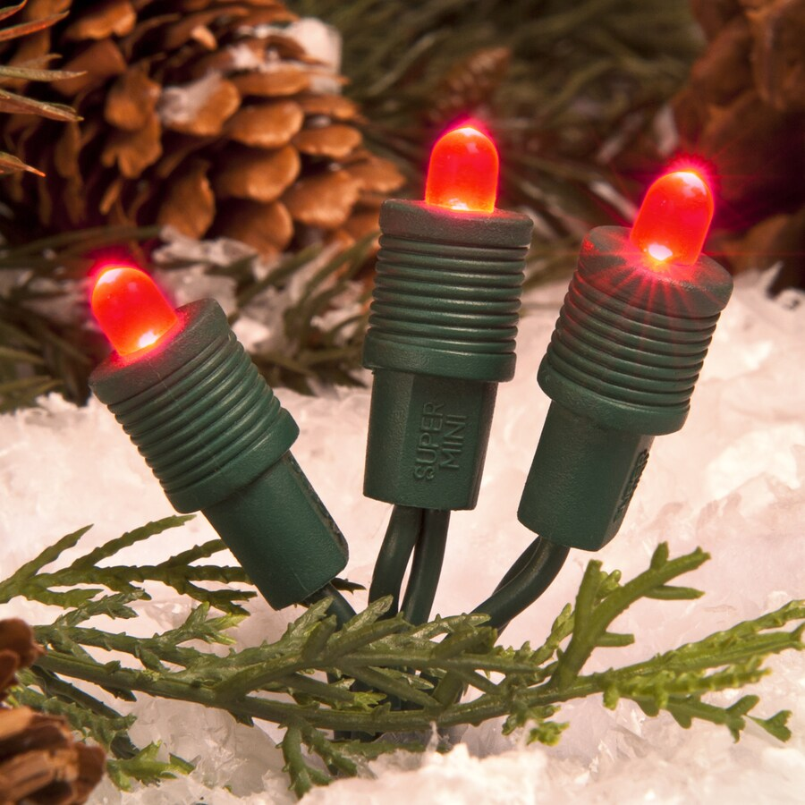 TreeKeeper 50-Count Constant Red Mini LED Plug-in Christmas String Lights