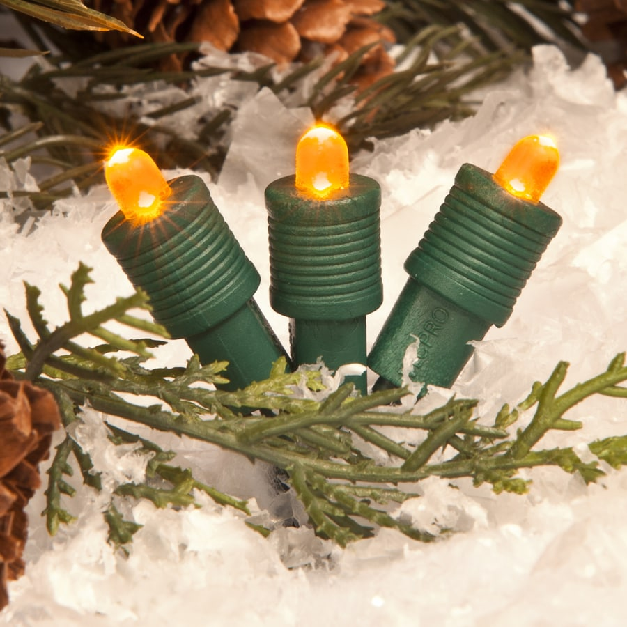 TreeKeeper 50-Count Constant Orange Mini LED Plug-in Christmas String Lights