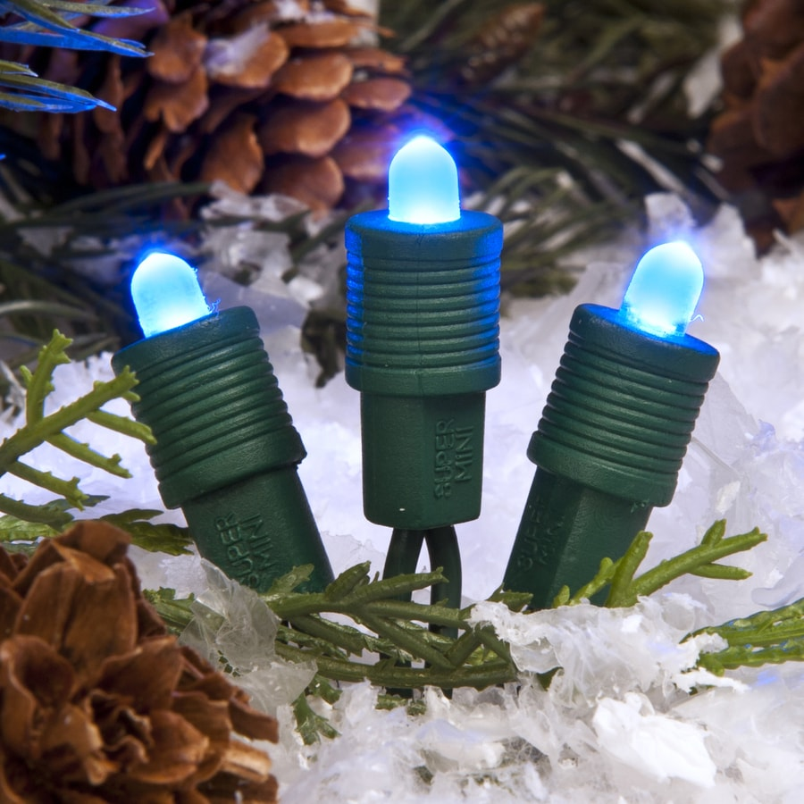 treekeeper 50 count constant blue mini led plug in christmas string lights