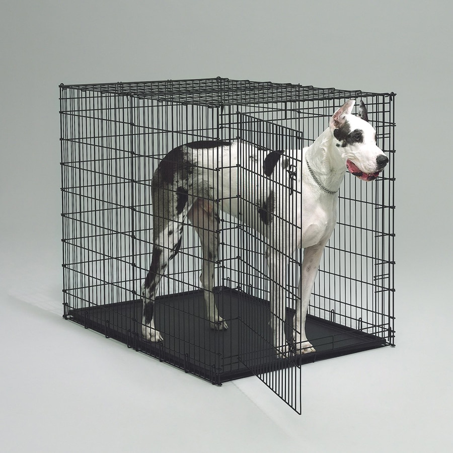 midwest pets 4.5-ft x 2.91-ft x 3.75-ft Black Plastic and Wire Pet Crate