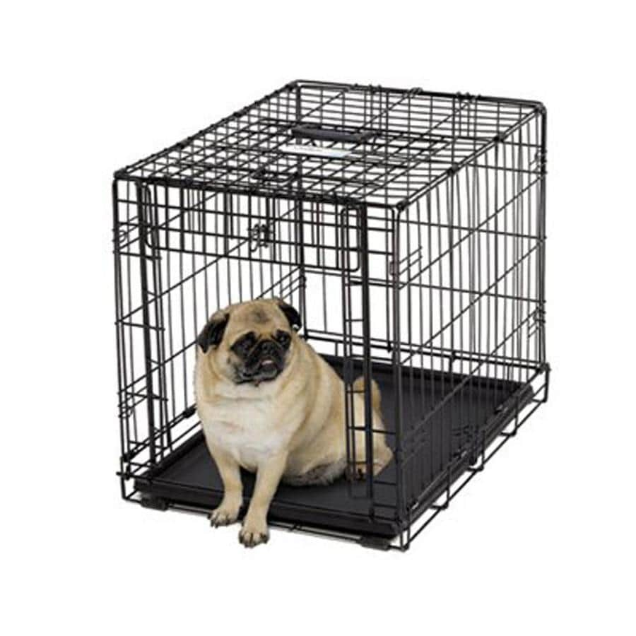 midwest pets 2.16-ft x 1.58-ft x 1.75-ft Collapsible Plastic and Wire Pet Crate