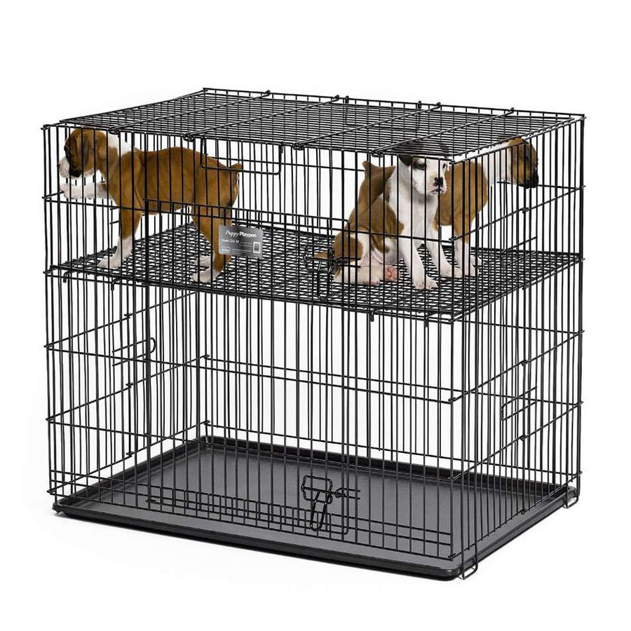 midwest pets 2-ft x 3-ft x 2.5-ft Double-Nickel Chrome Collapsible Plastic and Wire Pet Crate