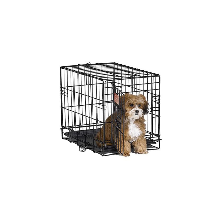 midwest pets 1.5-ft x 1-ft x 1.16-ft Black Collapsible Plastic and Wire Pet Crate