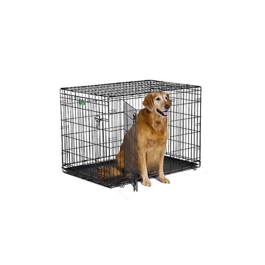 midwest pets 42-in x 28-in x 30-in Black Collapsible Plastic and Wire Pet Crate