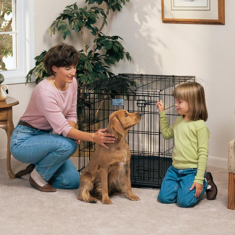 midwest pets 3-ft x 2-ft x 2.25-ft Black Collapsible Plastic and Wire Pet Crate