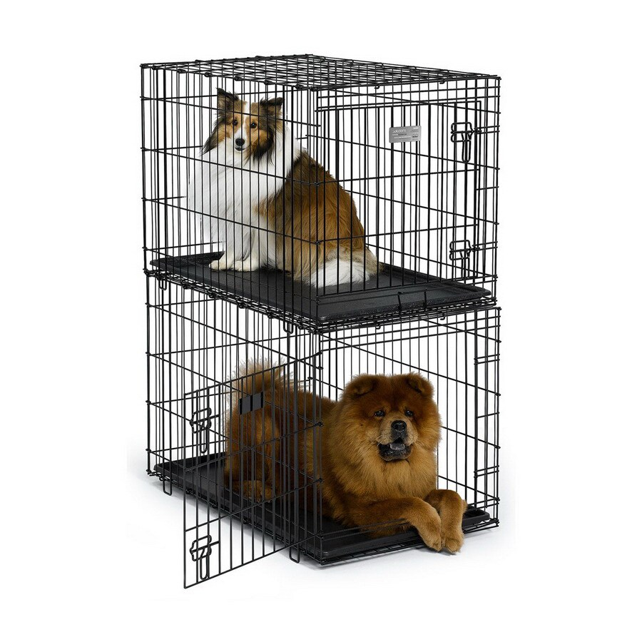 midwest pets 3-ft x 1.91-ft x 2-ft Black Collapsible Plastic and Wire Pet Crate