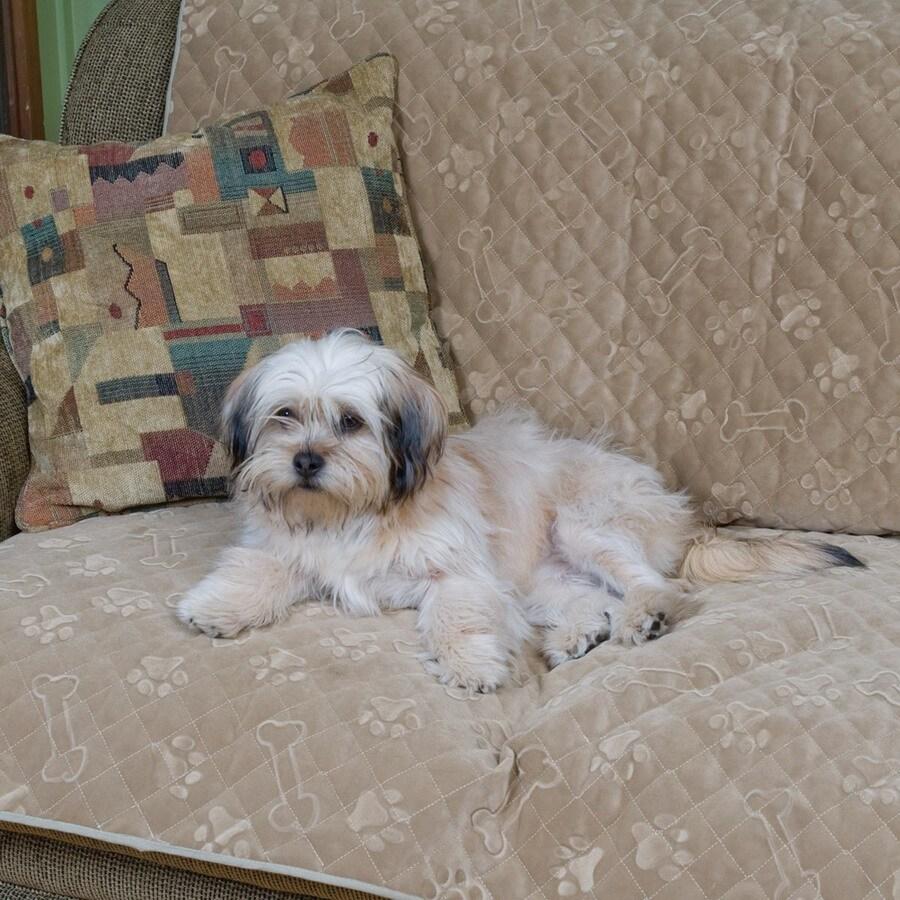 Snoozer Buff-Dog Print Microfiber Rectangular Dog Bed