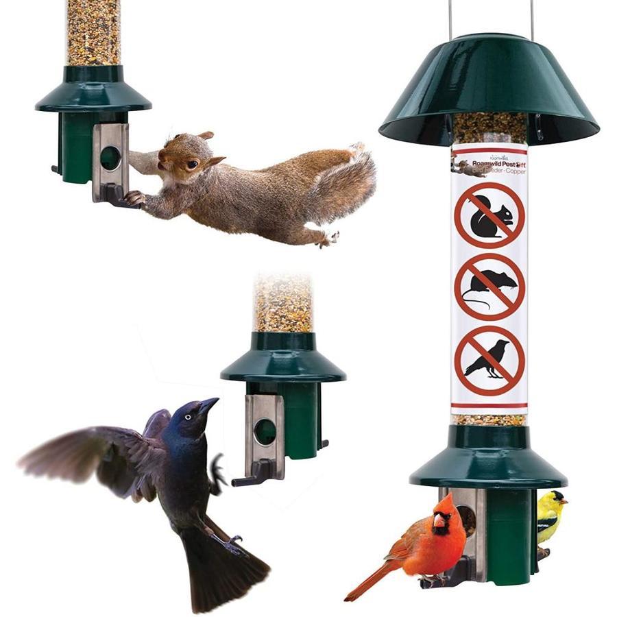 Capacity 4 lb Easy Feeder Squirrel Proof Bird Feeder