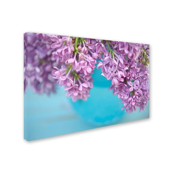 Trademark Fine Art Cora Niele Lilacs In Blue Vase V 16x24 Canvas Art In The Wall Art Department At Lowes Com