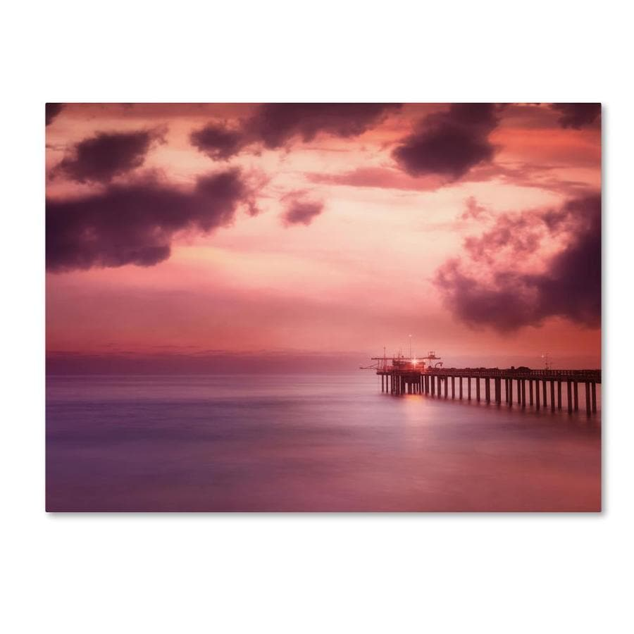 Trademark Fine Art Philippe Sainte Laudy Rose Bonbon 30x47 Canvas Art In The Wall Art Department At Lowes Com