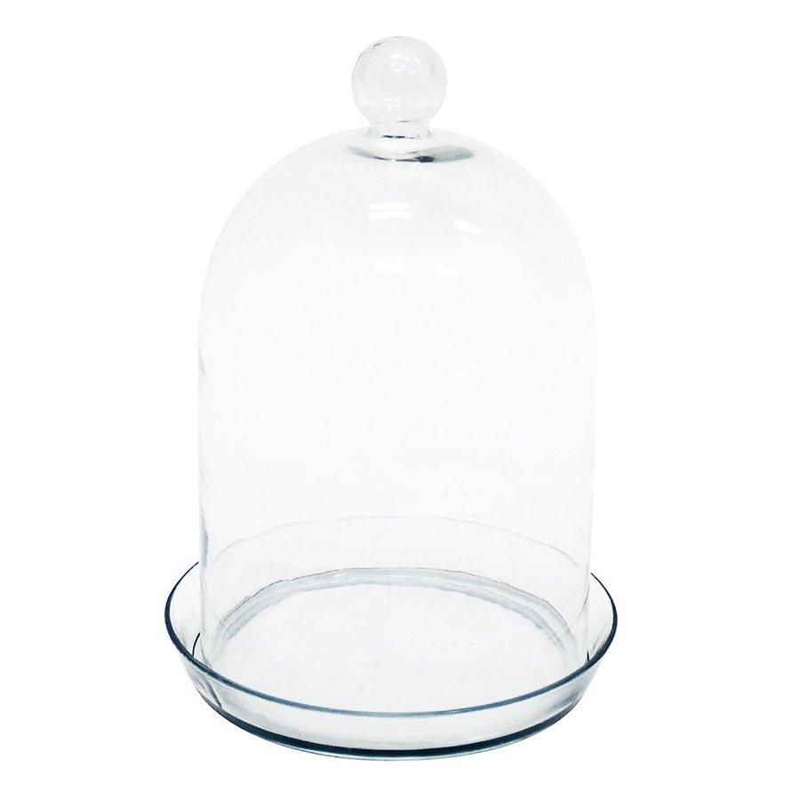 ACHLA Designs 10.5-in x 15-in Clear Bell Jar