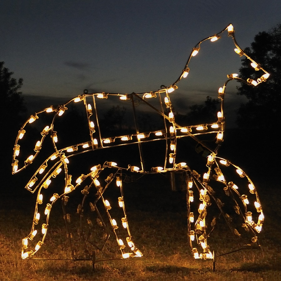 Shop Holiday Lighting Specialists 5.25-ft Animated