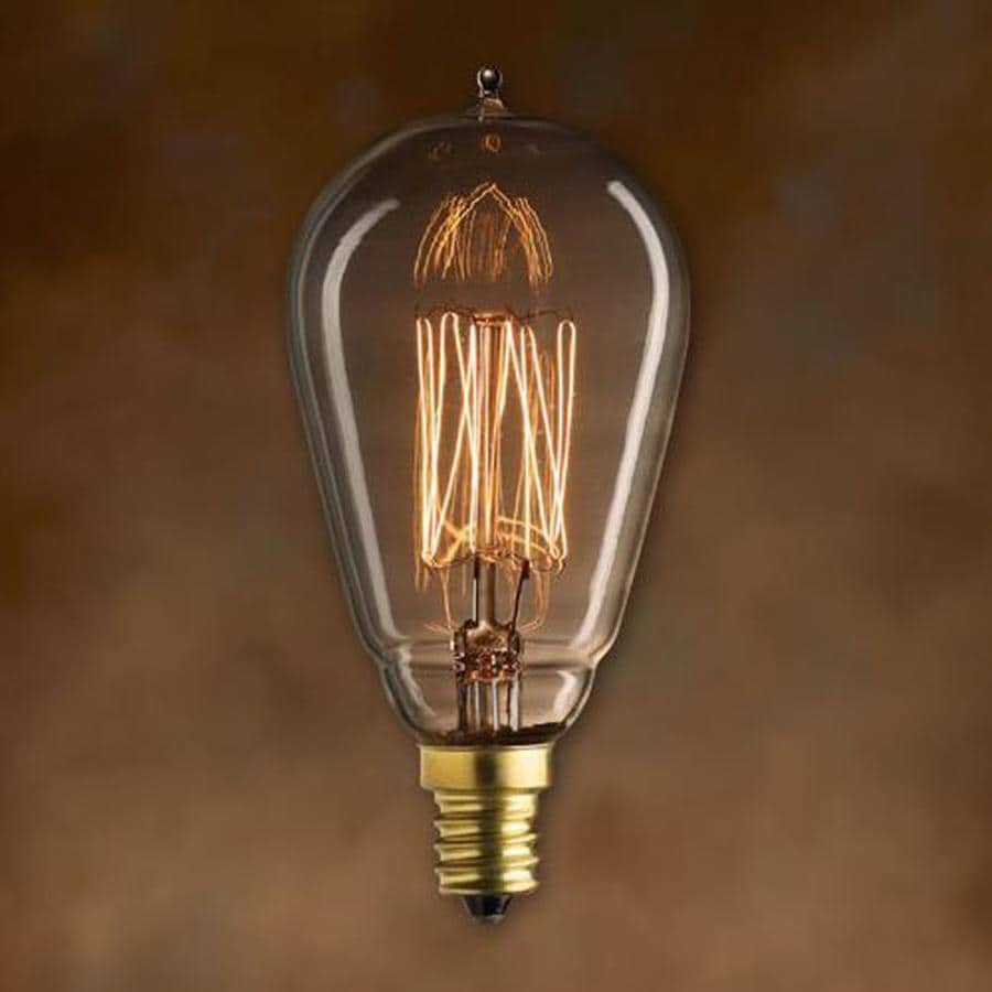 Shop Vintage Edison Light Bulbs at Lowes.com