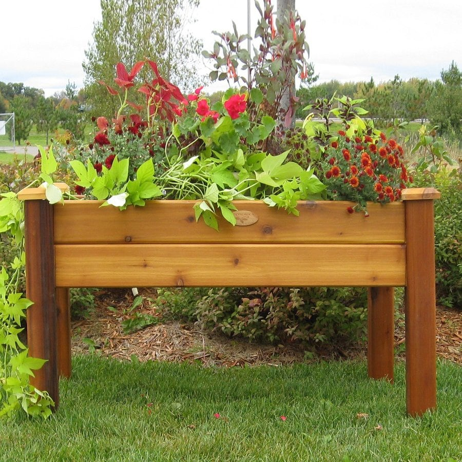 Shop Gronomics Safe Stain Red Cedar Raised Planter Box At