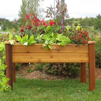 Gronomics Safe Stain Red Cedar Raised Planter Box At Lowes Com