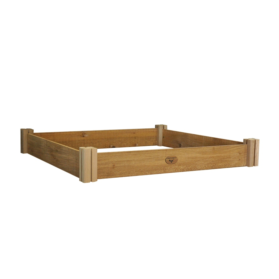 Gronomics 48-in W x 48-in L x 6.5-in H Rustic Cedar Raised Garden Bed