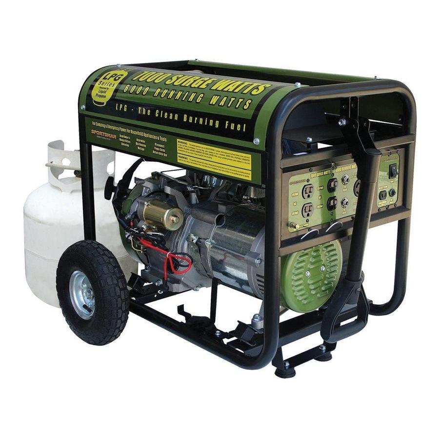 Buffalo Sportsman 6,000-Running-Watt Portable Generator with Engine