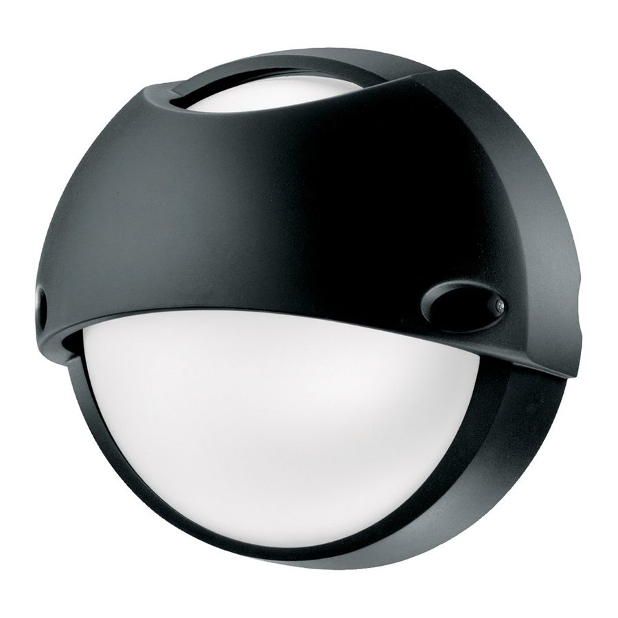 Eurofase Airy 10.43-in H Black Outdoor Wall Light