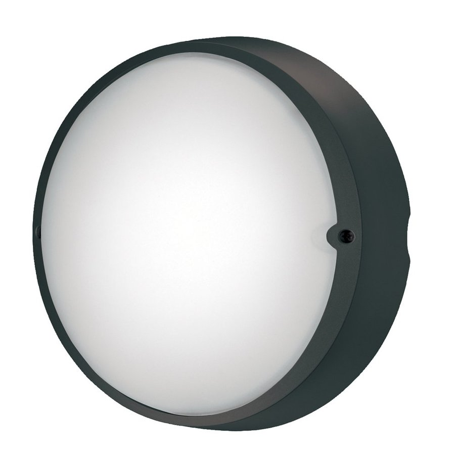 Eurofase Airy 10.37-in H Black Outdoor Wall Light